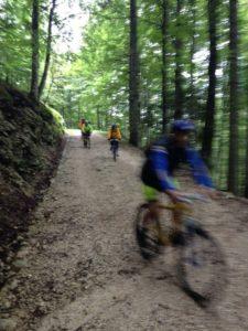 In Cansiglio in mountain bike, 12 giugno 2016