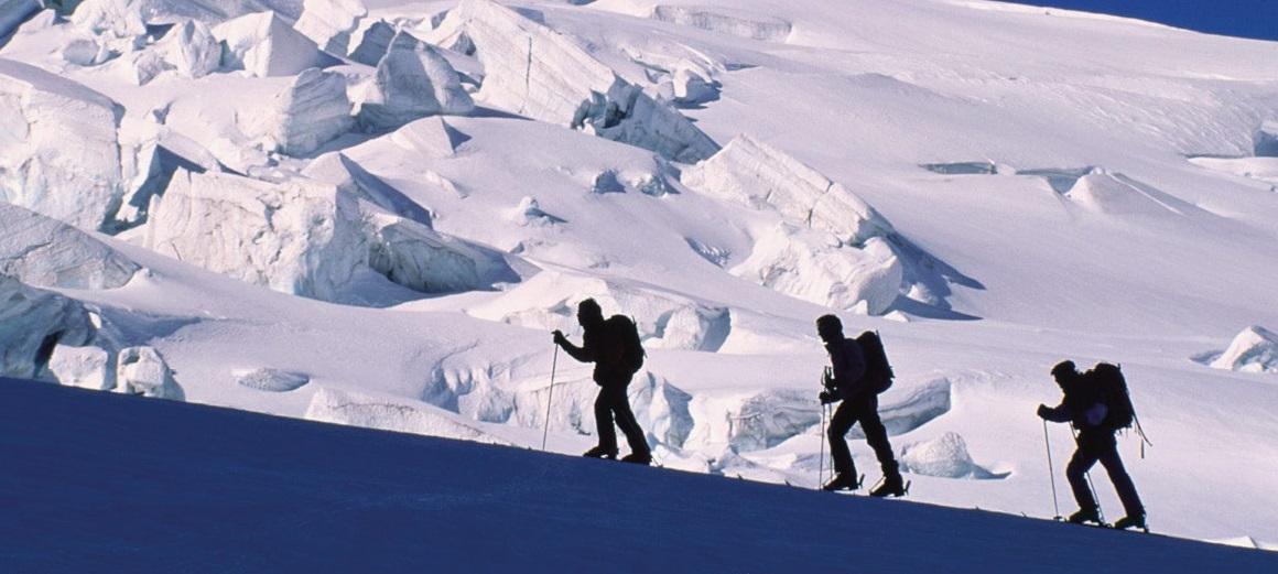 banner sci alp