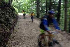 2016_06_02_gita_in_mountain_bike_cansiglio_ 02